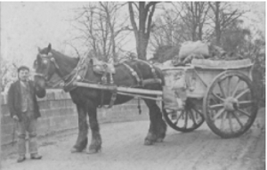 Amos Hewings with J. Vallance's horse and cart at Teignbridge